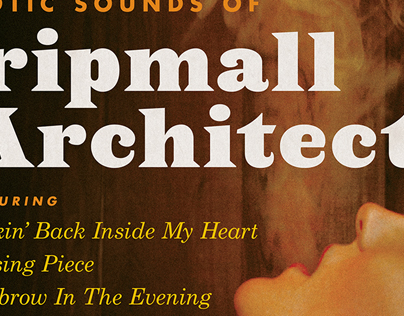 The Exotic Sounds Of Stripmall Architecture