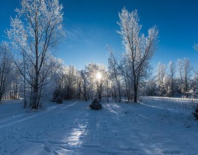 Freeze Explored (Pro Photography)
