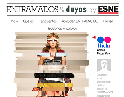 Website ESNE Entramados
