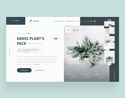 🌿🌱 Plantae — Product Page Concept 🏷️
