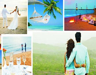 https://anaishajourney.com/itinerary/kerala-honeymoon-t