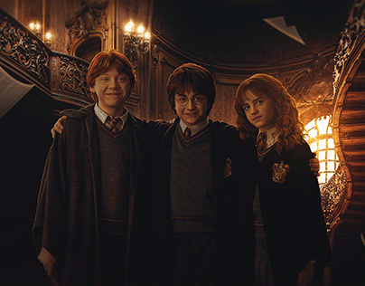 HARRY POTTER SOMETIMES DARKNESS COMES FROM UNEXPECTED P