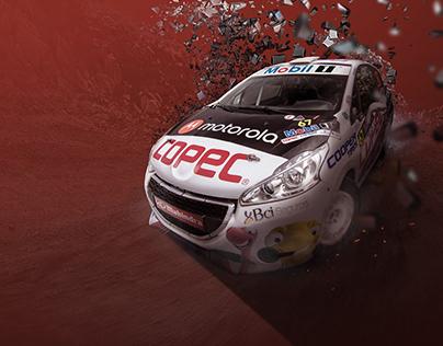 RallyMobil 2017