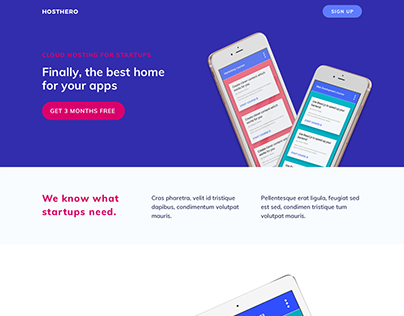 Landing Page Project / Hosting Deal 01