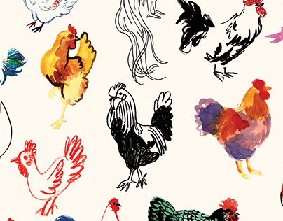 Fifty Chickens