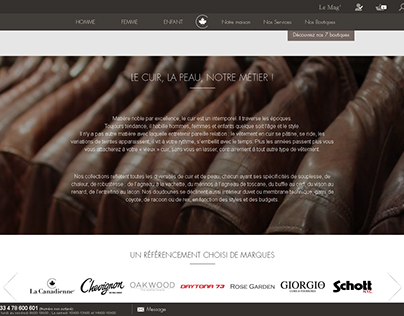 Habillage du site lacanadienne.com