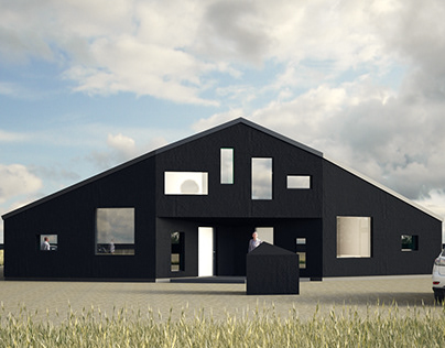MY BLACK HOUSE - Leszno - Poland ......work in progress