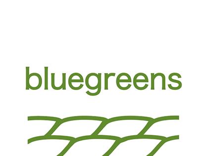 Bluegreens - kids wear private label