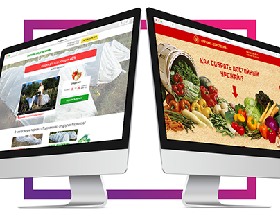 Landing page for online store