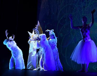 Spectacular Multimedia Performances