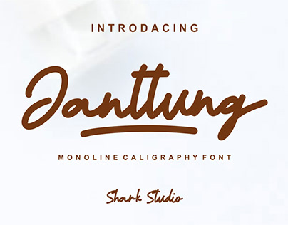 Janntung - Caligraphy Monoline Font