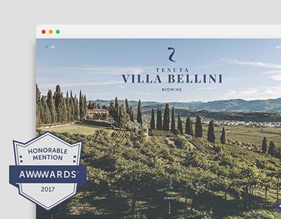 Villa Bellini An Organic Winery in Valpolicella
