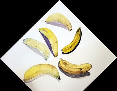 Water Color Study: Bananas
