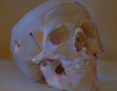 Color Study,skull