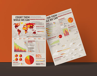 Data Visualization Posters