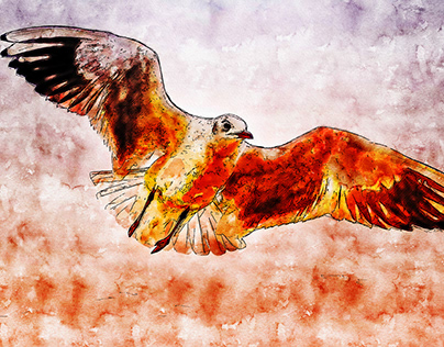 Wild Birds watercolor drawing