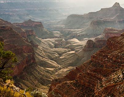 Der Grand Canyon am North Rim
