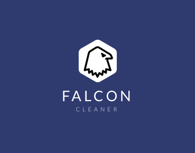 Falcon PC Cleaner