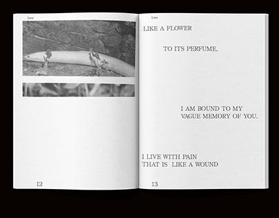 Pablo Neruda – Love Poema