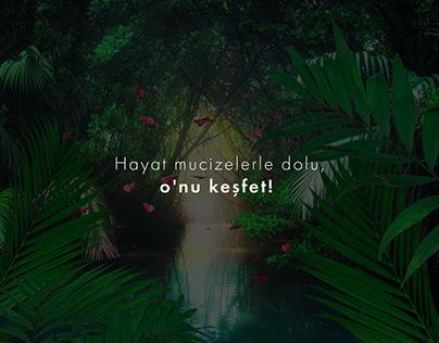 Konya Tropikal Kelebek Bahçesi Presentation Video