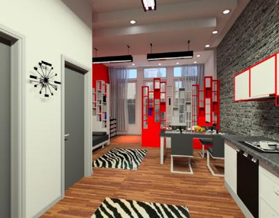 Advanced Visualization- Small Studio Apartment