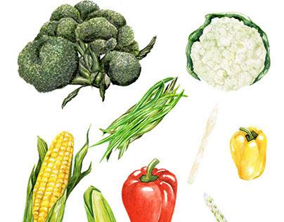 Japanese Supermarket Organic Packaging Illustration