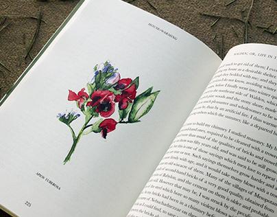 Book Design: Walden