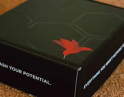 Noö Nectar - Brand Guidelines - Packaging Design