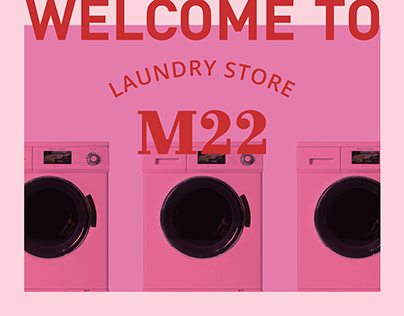M22 LAUNDRY STORE