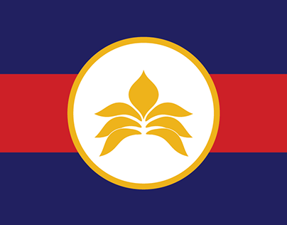Redesigned State Flags