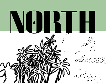 North Journal - Nº4