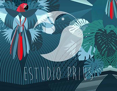 Exclusive Designs for Betabrand | Estúdio Prius