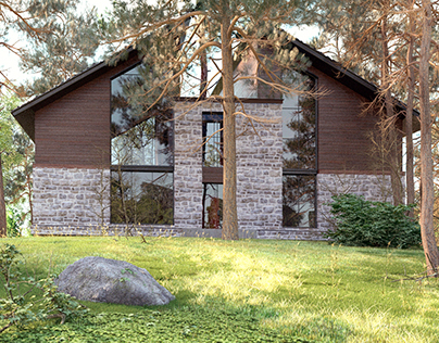 The house project in the forest