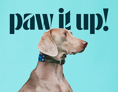 Paw It Up!