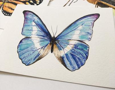 Série insetos em aquarela