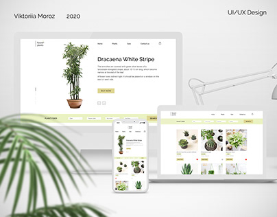 Online Store of Houseplants