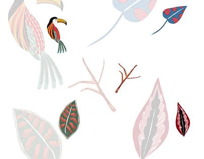 Adobe Fresco digital illustrations
