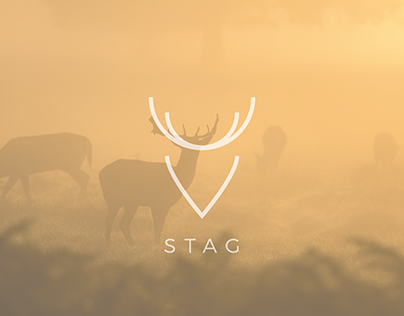 Stag - Logo Concept