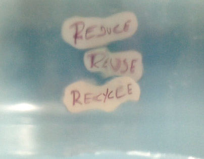 Reduce, reuse, recycle - fish