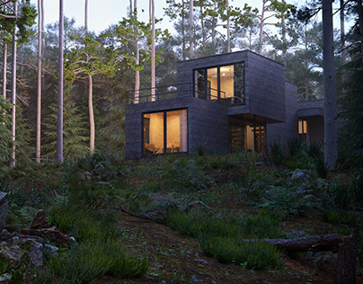 Marathon - house in the forest