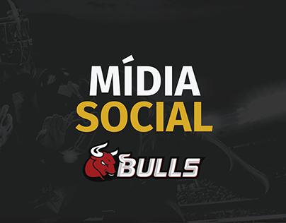 Mídia Social - Bulls 2017