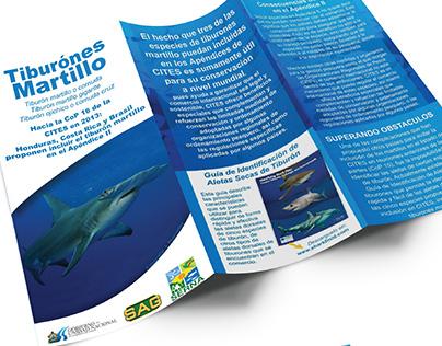 Brochure - CITES / Sharks