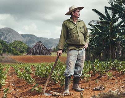 Farmers of Viñales