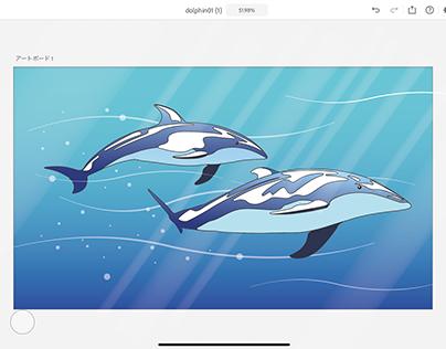 Dolphin Illustrator on iPad