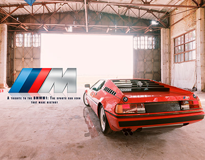 Tribute to the BMWM1