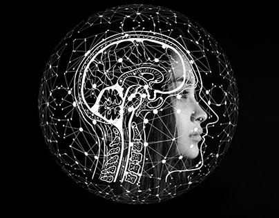 The Neurological System