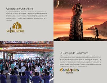 Website Corporacion Chinchorro