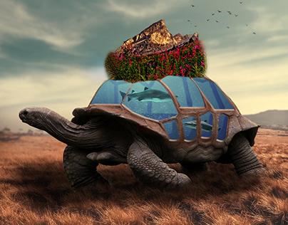Tortoise-Surrealism-Underwater