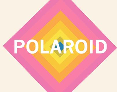 """""""Polaroid SX-70 Diagram"""""""