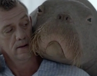 Allgäuer Latschenkiefer - Walrus